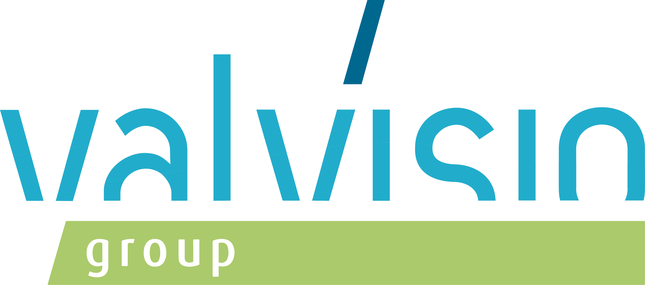 valvisio group